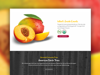 New Treo Website