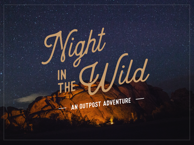 Night in the Wild pexels campfire camping typography type adobe illustrator