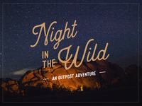 Night in the Wild