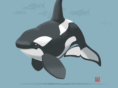 Screen Shot 2019 07 22 At 1.00.26 Pm affinitydesigner ipad pro critique feedbackplease ocean sketch hand drawn toon cartoon illustration whale killer whale orca
