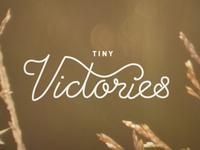 Tiny Victories Rebound