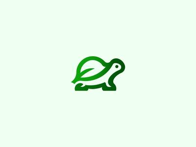 Nature Turtle 🐢+🍃