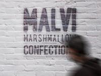 Malvi branding
