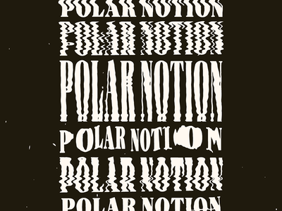 Polar Notion Scans glitch fonts font typography scans