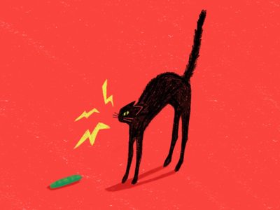 Scaredy Cat vs Cucumber   Dribbble Weekly Warm-up #9