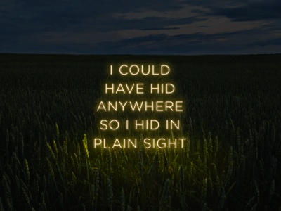 I could have hid anywhere graphic design nature typography