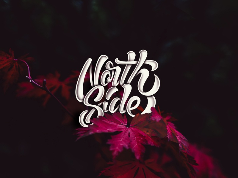 True North Strong calligraphy north art canada design graphic design illustration type lettering handlettering typography