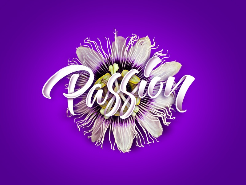 Passion hip hop music calligraphy art nature design graphic design illustration type lettering handlettering typography