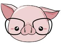 Nerd Piggy