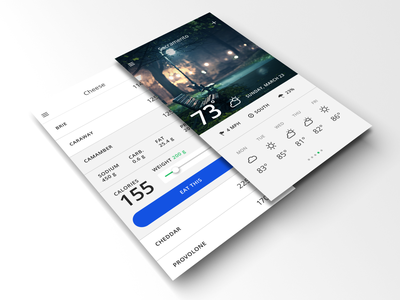 Personal Habit App mobile app design ux ui