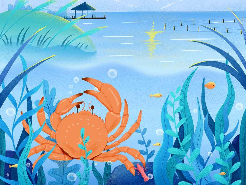 Crab package illustration design