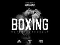 Standaris Font Family – Sans Serif – Boxing movie