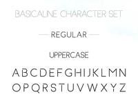 Basicaline Font Family – Sans Serif – Regular 1