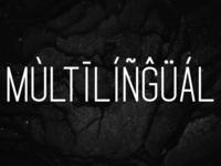 Standaris Font Family – Sans Serif – Multilingual
