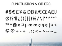 Basicaline Font Family – Sans Serif – Bold 4