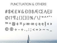 Basicaline Font Family – Sans Serif – Outline 4
