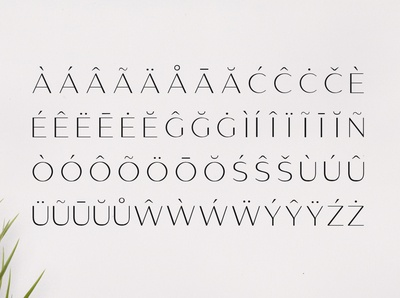 Gantic Font Family - Sans Serif - Accented Characters 01