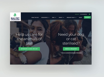 Bali Pet Crusaders Web Design colorful design minimal web design animal welfare animals charity nonprofits non-profit nonprofit web development web design agency design agency