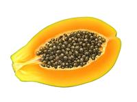 Papaya x FRUTTAGEL