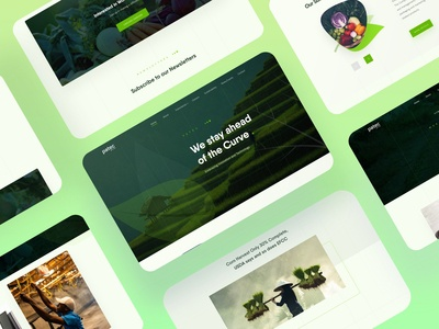 Patec - An agro-allied company website design
