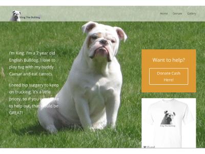 WordPress Website for Fundraiser html5 css3 php wordpress web design