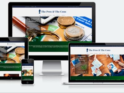The Pros & The Cons custom divi css3 html5 wordpress