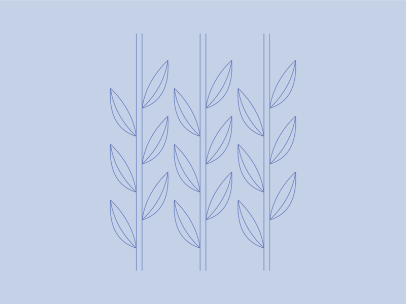 Bamboo design graphic design monochromatic flat illustrator organic bamboo leaves illustration icon nature leaves bamboo