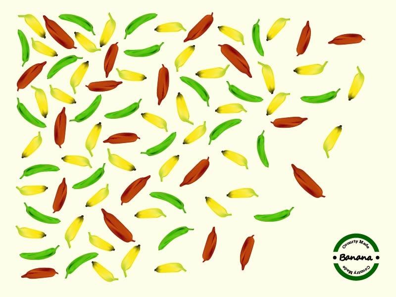 Banana branding illustration design