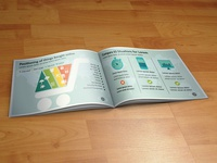 eCommerce Infographic Booklet