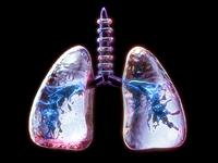 Frozen Lungs