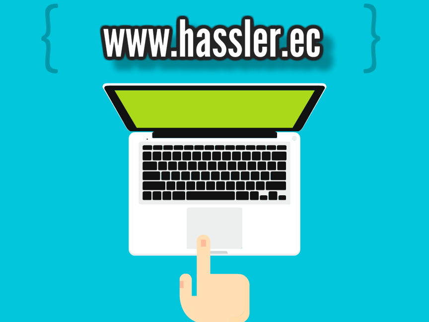 Webdisenghassler01