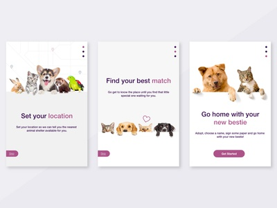 Daily Ui Challenge 023 - Onboarding onboarding onboarding app animal shelter animal day23 design daily ui ui dailyui daily challenge app