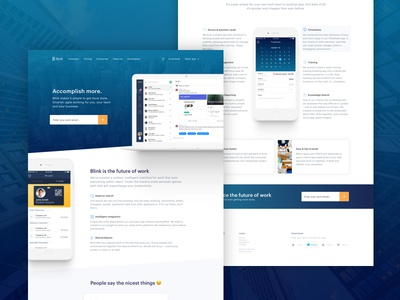 Landing Page - Blink ui ux user experience design usability simplicity security interface website marketing identity branding landing page
