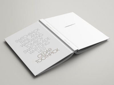 Minimal Typographic Hardcover cover line design stefan lorenzutti clean toothpick cedar poems picture grey avant garde font white book hardcover typography minimal