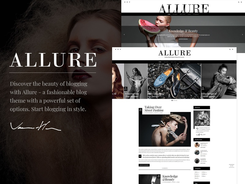 Allure - Beauty & Fashion Blog Theme photography personal portfolio lifestyle fashion blog fashion blog template responsive layout theme wordpress