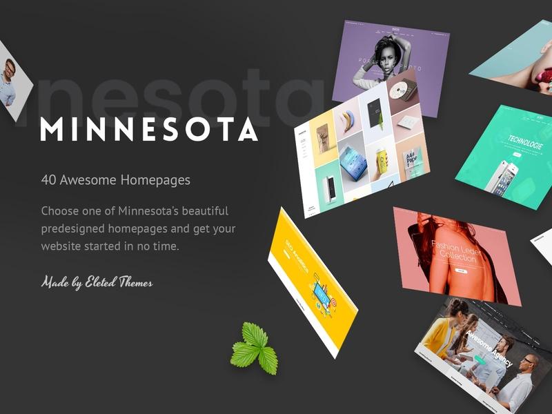 Minnesota - Professional WordPress Theme startup technology seo photography multipurpose medical marketing fitness freelance app showcase business agency portfolio design web design template responsive layout theme wordpress