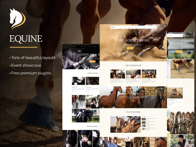 Equine - An Equestrian and Horse Riding Club Theme professional events equestrian web design template responsive layout theme wordpress