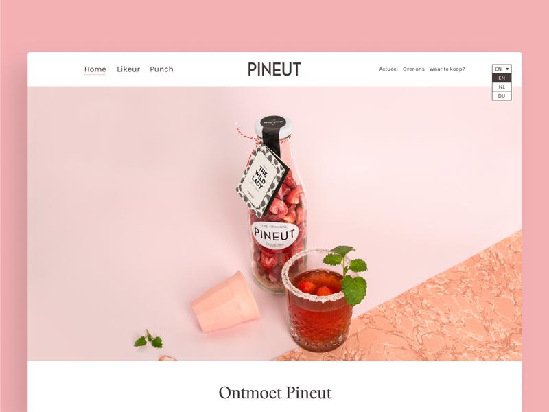 Pineut — Website branding web ux ui design