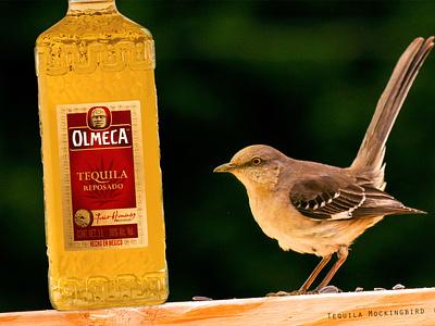 Tequila Mockingbird photoshop olmeca mocking bird mockingbird tequila