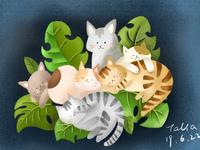 365days practice-023 cats
