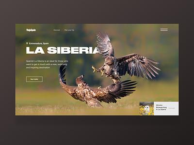 Spanish Siberia One page animals typography landingpage design web webdesign ui dailyui