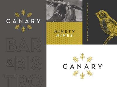 The Canary aviation gold canary graphic branding identity