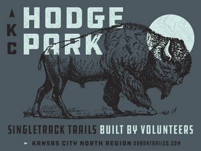 Bison Shirt Graphic ddchardware outdoors graphicdesign shirtdesign bison