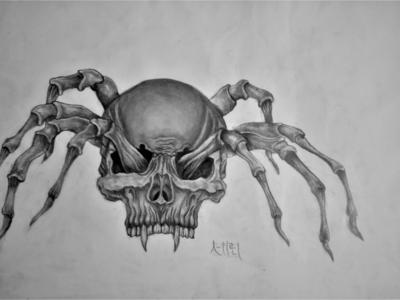 Spider Drawing | Sketching | Karakalem