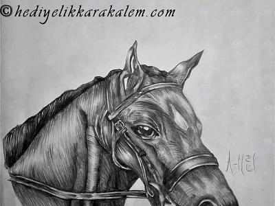 BLACK HORSE Drawing | Sketching | Karakalem realism love life abstractart portrait creative graphic myart art pencildrawing sketching paintings graphics illustration pictures image draw drawings charcoaldrawing charcoal