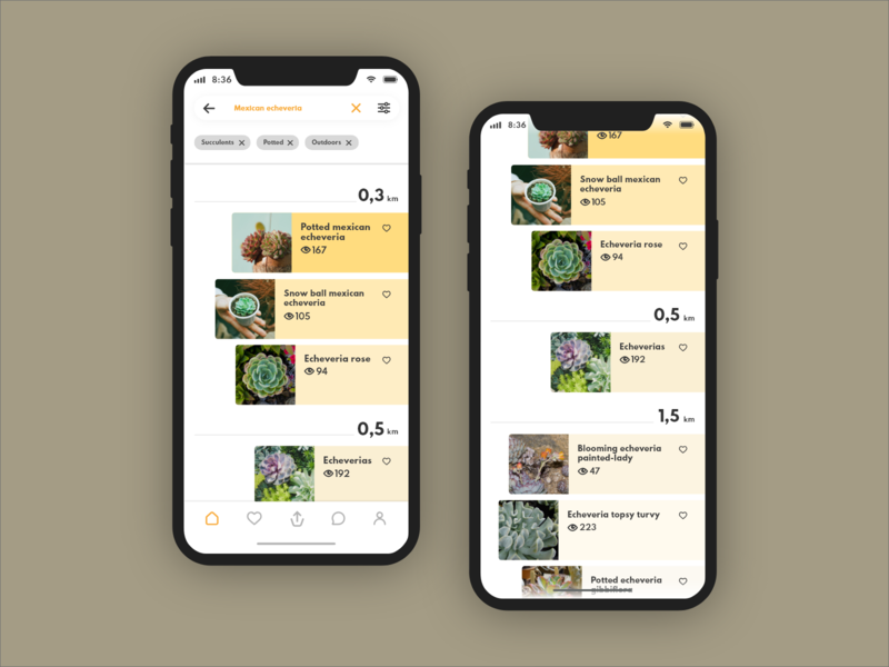 Anspot Search picture explore off-centre nearby search search bar filters tagging card design app ux ui design iphone x community location app giveaway plants app ux ui design
