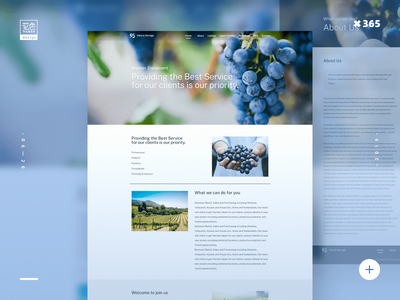 葡萄庄园企业网站Vineyard Business Website