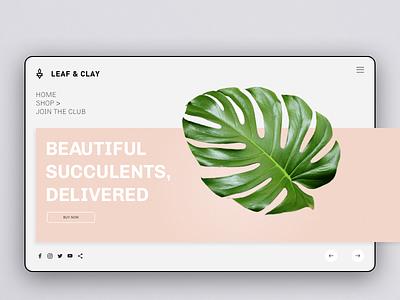 Leaf and Clay landing screen concept design daily ui grid layout off canvas floral monstera leaf oander ux ui  ux design ui