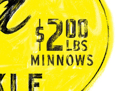 $2 Minnows fish script signage sign type texture typography