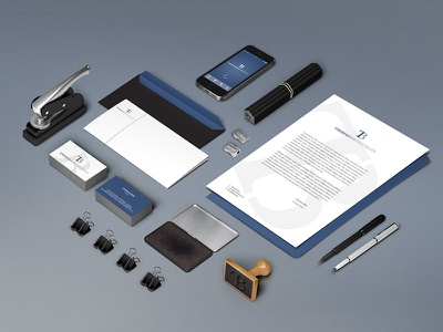 Branding Identity Thomas Bise Immobilier grey blue immobilier real estate tb logotype logo corporate identity